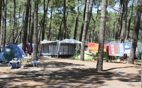 Camping Albret Plage 2013