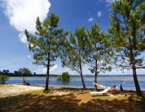 bisca-lac-plage-lacustre