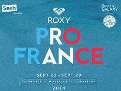 roxy 2014