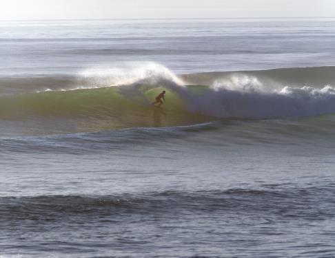 surf-vague-ocean-aventure