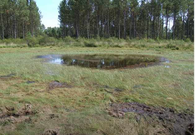 Lagunes de brocas 2