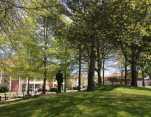 M morial fran ois mitterrand a soustons patrimoine culturel tourisme landes 40 - Office de tourisme de soustons ...